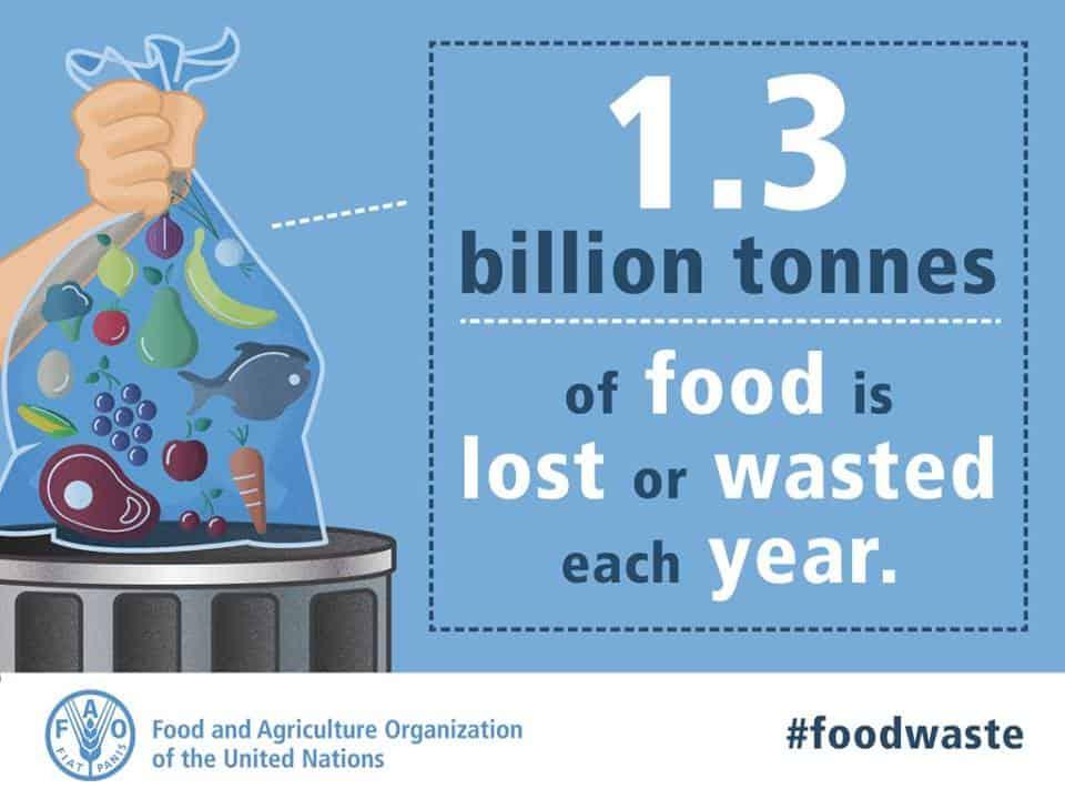 1.3-billion-tonnes-food-wasted-each-year-cartoon-waste-in bin-image